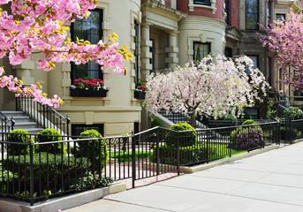 Spring in Back Bay, Boston