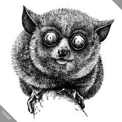 black and white engrave isolated tarsier vector illustration