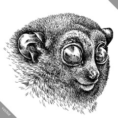 black and white engrave isolated tarsier vector illustration
