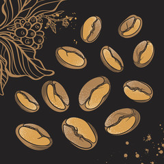 Set of coffee beans on black background. Vector. Shape
