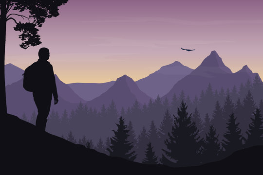 A tourist walking through a mountain landscape with a forest and watching a flying bird under a morning sky with a dawn