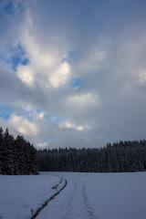 Winter, Winterzeit, Schnee, Schwarzwald, Spaziergang, Wandern