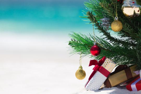 Australian Beach Christmas