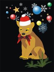 Merry Christmas - Happy New Year,
