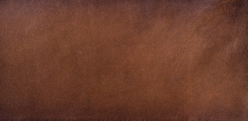 Genuine leather texture background Wall mural