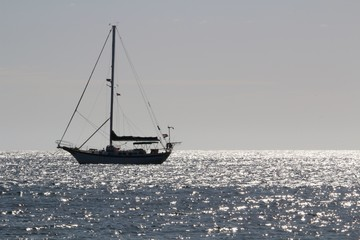 Sailing boat on the atlantic ocean in backlight