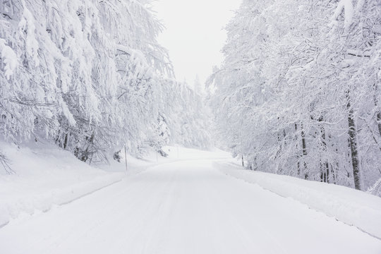 A snowy road in the mountains