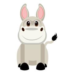 Isolated cute donkey