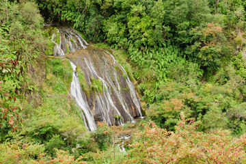 Tangoio Falls and the Kareaara stream in the Tangoio Falls Scenic Reserve north of Napier Hawkes Bay New Zealand