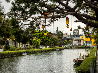 Venice Canals, hanging lamps on the tree -  Venice Beach, Los Angeles, California, USA