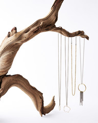 Fototapeta Delicate necklaces hanging from a twisted driftwood branch obraz