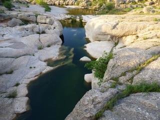 Aguaviva  es una localidad y municipio de la provincia de Teruel en la comunidad de Aragón, España
