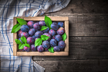 Plums with leaves in old rustic wooden box on kitchen cloth and dark wooden table overhead colorful group in studio