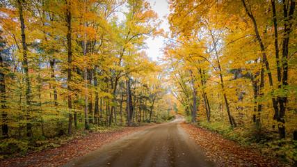 Algonquin Fall Colors