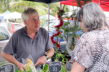 Senior male grower at farmers market smiling and showing organic produce to female customer, with Christmas trees and tinsel in background. Photographed in Kerikeri, New Zealand, NZ