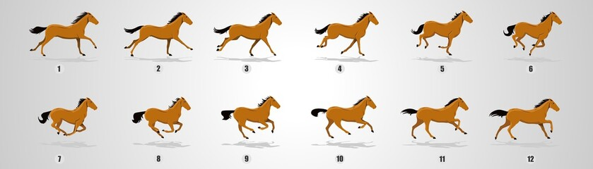 Horse Run cycle, Animation, Sprites, Sprites sheets, Animation frames, sequence,