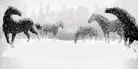 Horses in Snow field, Silhouette