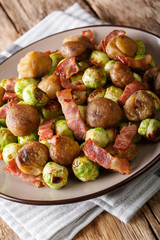 Fried chestnuts, brussels sprouts and bacon closeup. vertical
