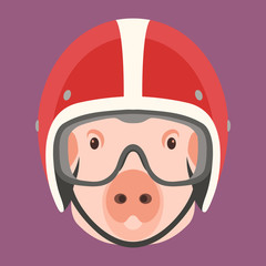 pig face in helmet vector illustration flat style front