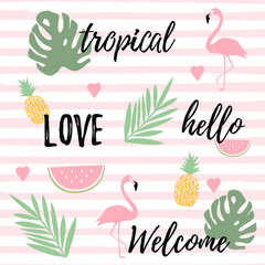 Tropical background with flamingos watermelon and pineapples. Summer vector illustration design. Flamingo background. Monstera leaves banner. Exotic background poster
