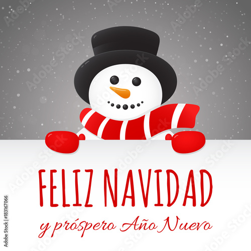 merry christmas in spanish feliz navidad concept of card with decoration vector