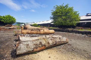 Stacked wood at traditional charcoal factory .