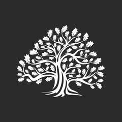 Huge and sacred oak tree silhouette logo badge isolated on dark background. Modern vector national tradition green plant icon sign design.  Premium quality organic logotype flat emblem illustration.