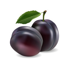 juicy plum, delicious fruit on white background in realistic style. Vector illustration.