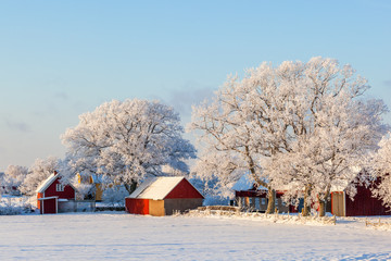 Farm with frost and snow