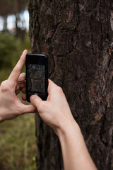 Camera texture create forest tree photo concept. Working process. Unity with the nature.
