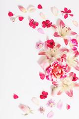 Papiers peints Fleurs Vintage summer flowers on white background