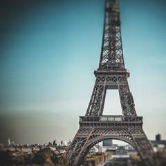 Papiers peints Rouge, noir, blanc Tour Eiffel (Eiffel Tower) in Paris, France