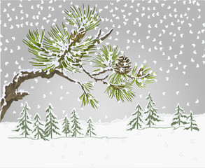 Winter landscape pine branches and cones needles and snow nature background vintage vector botanical illustration
