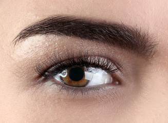 Female eye with eyelash extensions, closeup