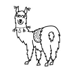Isolated outline cartoon baby llama.