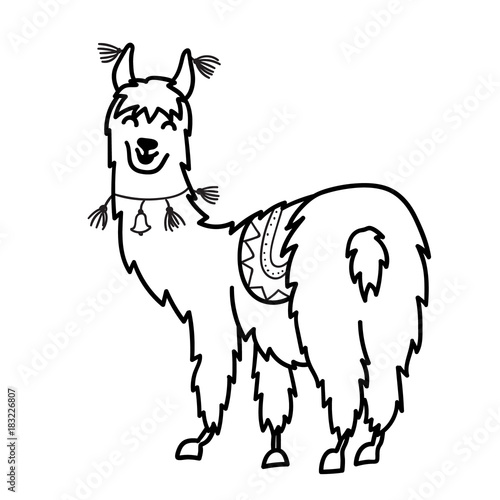 isolated outline cartoon baby llama - Outline Cartoon Pictures