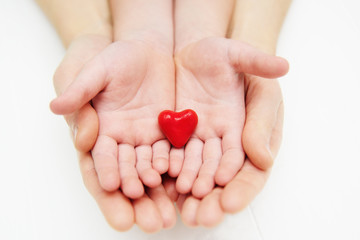 adults and children's hands hold a small red heart. Family, love, parents, children, care, tenderness