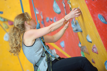 Woman climbing indoor wall