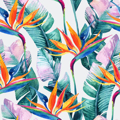 Photo sur Aluminium Aquarelle la Nature Watercolor tropical seamless pattern with bird-of-paradise flower.