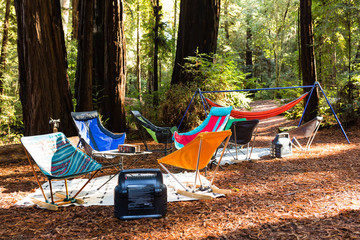Folding camping chairs and hammocks decorate a campsite in a redwood forest