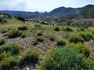 Olocau del Rey, es un municipio de la Comunidad Valenciana, España. Situado en el noroeste de la provincia de Castellón, en la comarca de Los Puertos de Morella