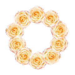 Pastel yellow roses arranged in wreath with white ring overlay, isolated on white