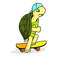 skating turtle