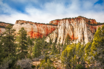 The white and red sandstone Mountain Range on the side of Mount Camel Highway in Zion National Park, one of the most popular holiday destinations in American Southwest, Utah, USA.