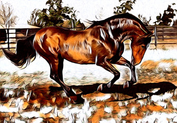 freehand horse art illustration paint