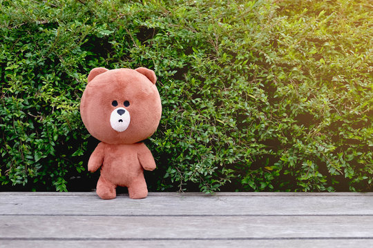 Brown teddy bear on wooden floor with Bush on the background