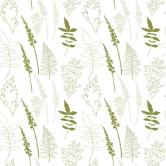 Floral vector seamless pattern with different hand drawn leaves, wild flowers and plants