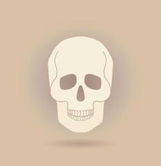 Icon human skull.