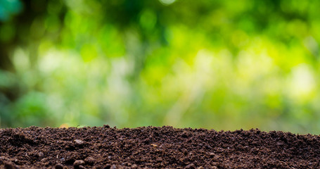 soil texture with green background