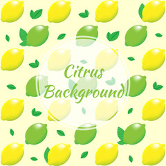 Citrus background. Lemon and lime with leaves